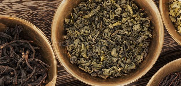 Grüner Tee – Fragen und Antworten zum abnehmen
