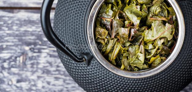 Richtig abnehmen mit Grüner Tee