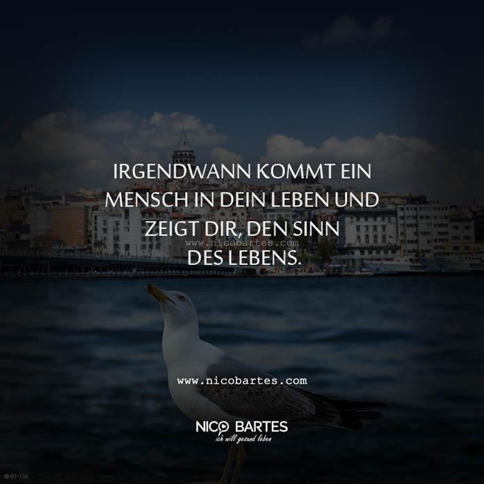 sprüche sinn des lebens Der Sinn des Lebens – Spruch des Tages   Nico Bartes – Schnell  sprüche sinn des lebens